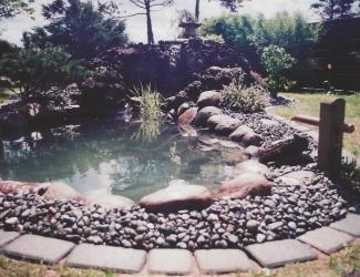 japansk haver