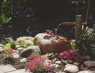 japanske haver